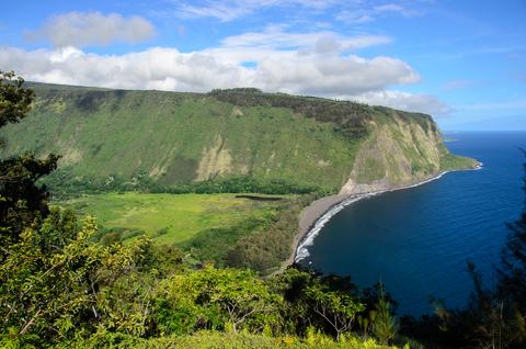 Hamakua Koa Realty Inc Search Big Island Hawaii
